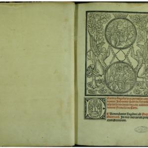 Practica singularis ac perutilis conspicui domini Johannis Petri de Ferrarijs utriusque iuris doctoris : una cum additionibus domini Francisci de Curte