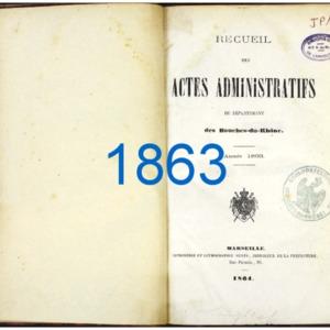 RES_JP_118_RAA-BDR_1863.pdf