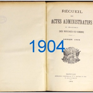 RES_JP_118_RAA-BDR_1904.pdf