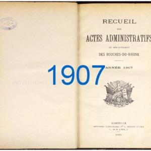 RES_JP_118_RAA-BDR_1907.pdf