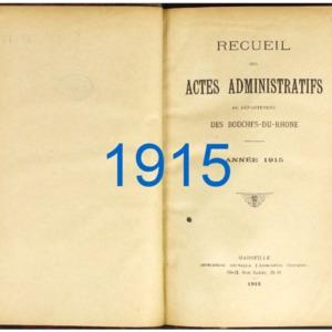 RES_JP_118_RAA-BDR_1915.pdf