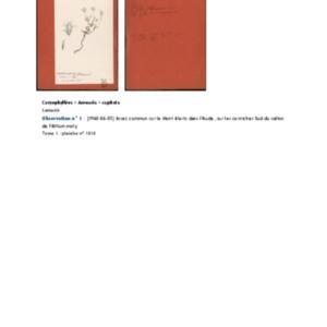 Poucel-Flore-Vol-03_Observations.pdf