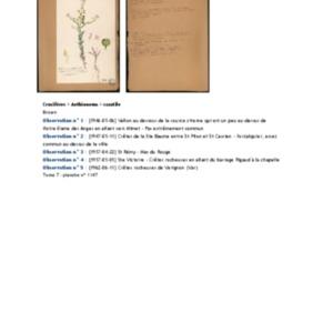 Poucel-Flore-Vol-07_Observations.pdf