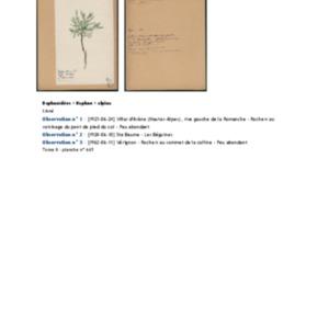 Poucel-Flore-Vol-08_Observations.pdf