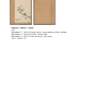 Poucel-Flore-Vol-11_Observations.pdf