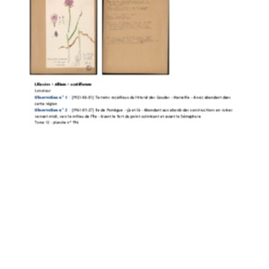 Poucel-Flore-Vol-12_Observations.pdf
