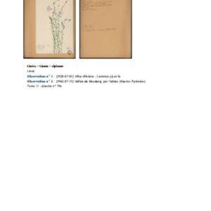 Poucel-Flore-Vol-13_Observations.pdf