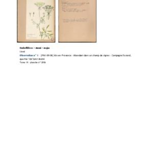 Poucel-Flore-Vol-14_Observations.pdf