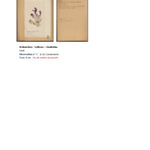 Poucel-Flore-Vol-16bis_Observations.pdf