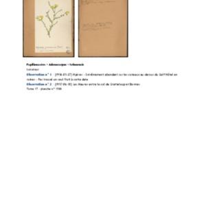 Poucel-Flore-Vol-17_Observations.pdf