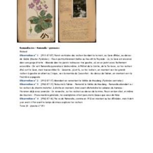 Poucel-Flore-Vol-20_Observations.pdf