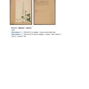 Poucel-Flore-Vol-21_Observations.pdf