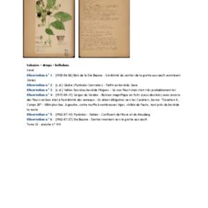 Poucel-Flore-Vol-22_Observations.pdf